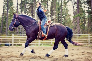 Free rein can free our mind and teach us to embrace the feeling of trust in our horse.